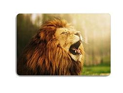 African Steppe Animal Lion Doormat Entrance Mat Floor Mat Ru