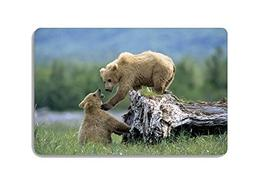 Animal Bear Doormat Entrance Mat Floor Mat Rug Indoor Front