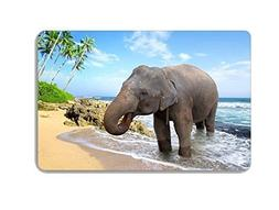 Animal Elephant Doormat Entrance Mat Floor Mat Rug Indoor Fr