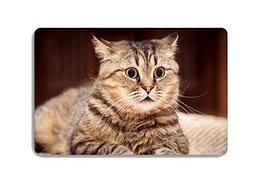 Cute Pet Cat Animal Doormat Entrance Mat Floor Mat Rug Indoo