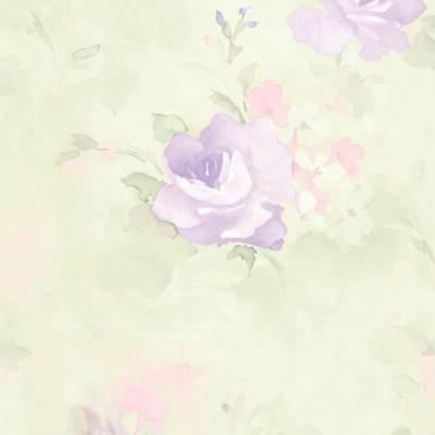 Waterbury Floral x Wallpaper 32.7' x